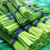 江门蔬菜配送公司